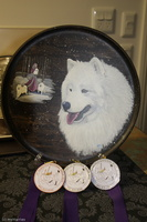 20130630 National Samoyed Show - Bulla-Victoria  308 of 310